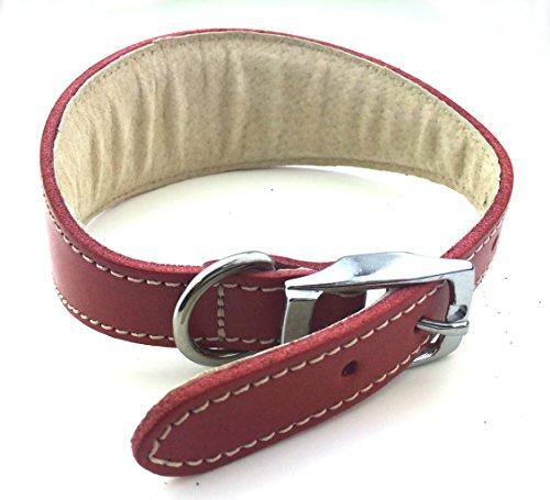 BBD Luxuriöses Hundehalsband für Rennhunde, rot