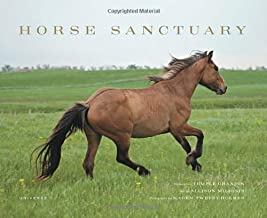 Horse Sanctuary: Running Free by Allison Milionis (2013-03-26)