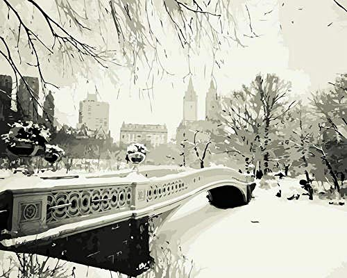 DIY 5D Diamond Painting Kits Winter Central Park - Adults by Number Painting Diamond Bead Art Picture Embroidery Canvas Home Wall Decoration 40x50cm