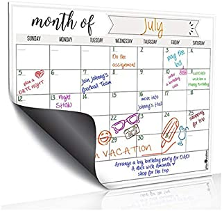 WYRE Easy Erase Monthly Kit - Planner, 16in x 12in with 3 Markers, 5 Photo Magnets and Eraser