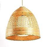 WFZRXFC Chandelier de Estilo asiático del sudeste Halflow Design Colgante Luz...