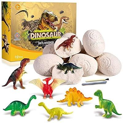 AOKESI 12 Dino Eggs Dig Kit Discover Dinosaur Toys for Kids 12 Dinosaur Fossil Eggs Dino Eggs Excavation Set Birthday for Boys 3 4 5 6 7 8-12 by AOKESI