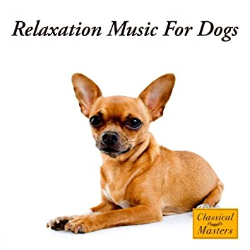 Relaxation Music For Dogs