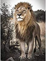 大人のための数字で描く子供動物ライオン初心者キャンバスに簡単なアクリル絵の具とブラシ40×50cmフレームレス