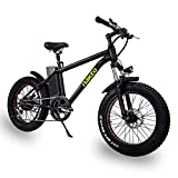 NAKTO 350W Electric Bike 20' Electric Mountain Bike Dual Disc Brake Electric Bicycle with 36V10A...