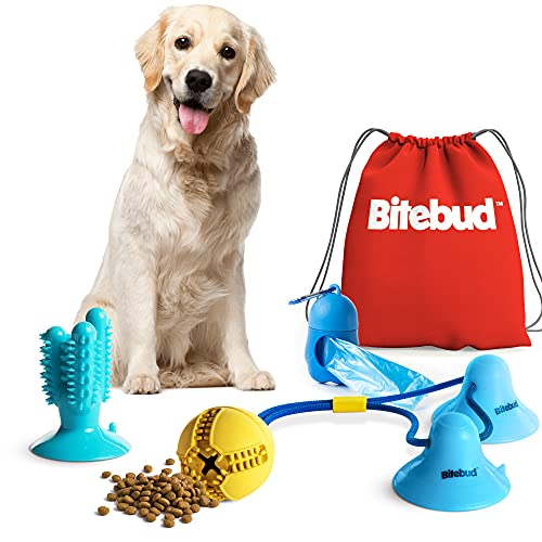 Double Suction Cup Dog Toys Set for Aggressive Chewers 100% Rubber (3 in 1), Teeth Cleaning Toothbrush Toy Stops Plaque & Tarter, Cherry Blossom Waste Bag Dispenser Bonus, Tug of War Toy for Dog's IQ