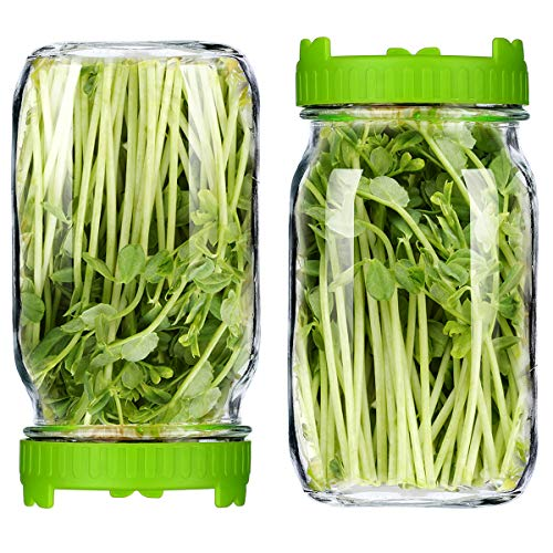 2X35oz Seed Sprouting Jar Kit - 2 Wide Mouth Quart Sprouting Jars & 2 Sprouting Jar Lids Sprout Maker Use for Growing Organic Healthy Fresh Broccoli, Alfalfa, Mung Bean Microgreens Sprouts and Salad