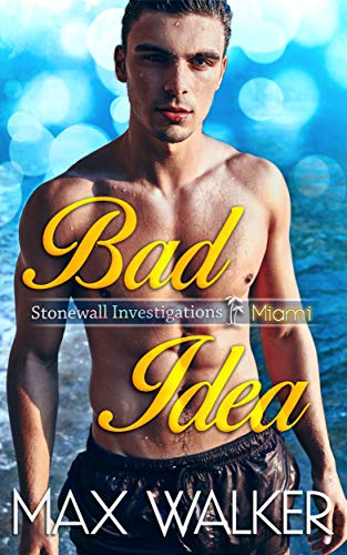 Bad Idea (Stonewall Investigations Miami Book 1)