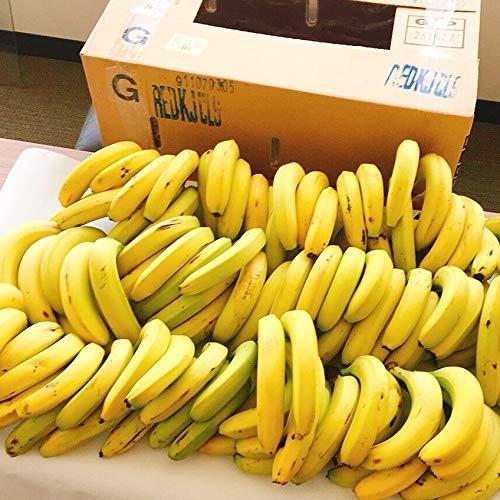 訳あり 甘熟王 バナナ 業務用 約15kg 約85本 ばなな