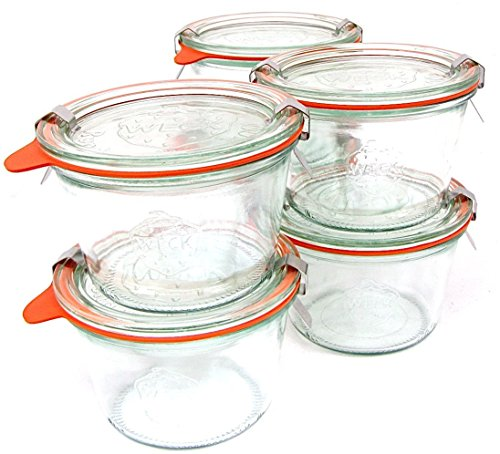 0.25 Liter Mold Jars with Lids - 6 Rings and 12 Clamps