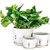 Plant Pot, OAMCEG Round Modern Flower Pot Small to Medium Sized(4inch/5.5inch/6inch), Ceramic Garden...