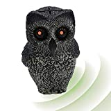 ISOTRONIC - Finto repellente per uccelli a forma di gufo, con occhi luminosi, realistico e simulato