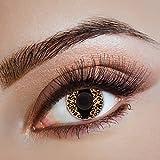 aricona Kontaktlinsen - Farbige Kontaktlinsen mit Leoparden Muster - Motivlinsen Kontaktlinsen ohne Stärke für Katzenaugen zu Karneval, Fasching, und Kostüm-Partys, 2 Stück