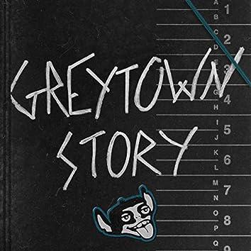 Greytown Story