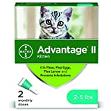 Best Flea Collars For Kittens - Advantage II For Cats, Topical Cat Flea Treatment Review