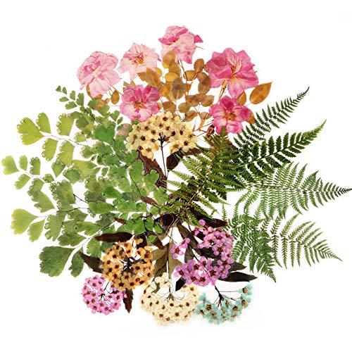 24 Blatt (20x11cm pro Blatt) Blumen Aufkleber Sticker Scrapbooking Aufkleber Sticker in 4 Style Vintage Stickerbögen Blumen für Fotoalbum Kalender Notizbuch Tagebuch DIY Dekoration