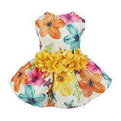 Easter Outfits For Dogs - Floral patterned dog dress.