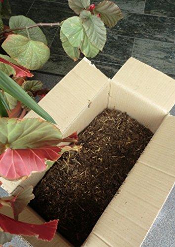 Bio Rinderdung 25 kg aus reinem Betrieb, Dünger Naturdünger