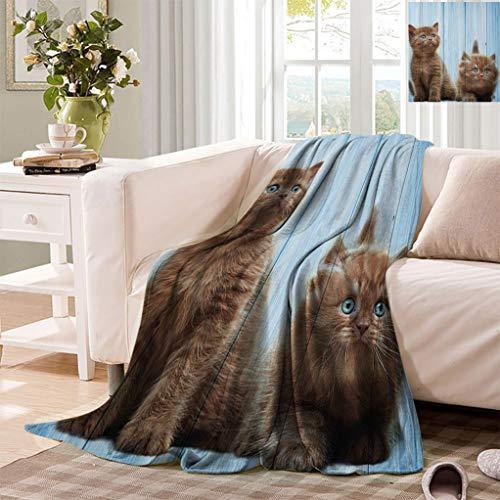 "Datiansun Animal Decor Throw Blankets, Baby Kitten Siblings Lovely Animals Creatures Best Friend Artwork Print Fluffy Mini Blanket for Couch Sofa, 50"" x 30"" Caramel Sky Blue"