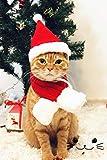 Smoro Nuevas Mascotas Adornos del día de Navidad Perros Lindos Gorro Bufanda Fibras de acrílico Rojo Gorro de Navidad Bufanda Traje Santa Gato Accesorios para Mascotas
