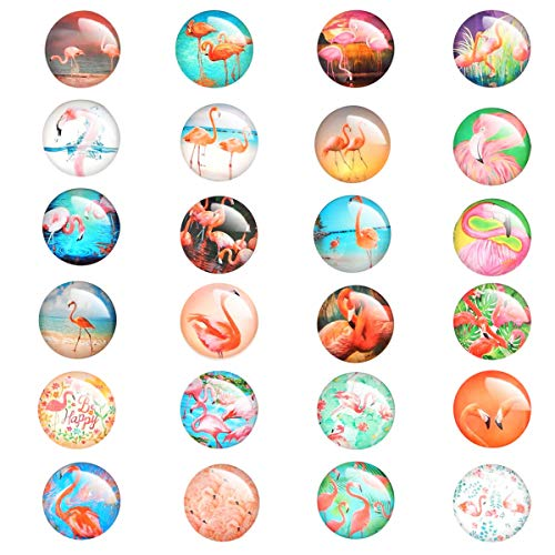 Conpru 24 Pieces Beautiful Glass Fridge Magnets, Pretty Flamingo Refrigerator Magnets for Office Cabinet Refrigerator Whiteboard Photo
