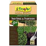 Flower 70573 70573-Harina de Huesos, No Aplica, 16x5.5x23.5 cm