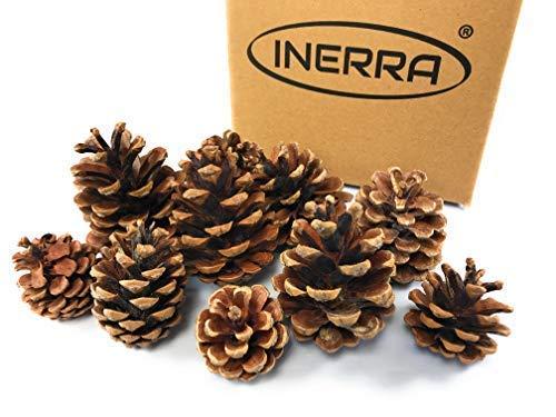 INERRA Piñas Cono - Natural Árbol de Navidad, Guirnalda & Corona Decoración - 40 Cones
