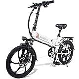 WFIZNB Bicicleta Eléctrica Plegable 20 Pulgadas Bicicleta Eléctrica con 36V 250W Motor Eléctrico Scooter, Alcance Eléctrico Puro 35-40km, Alcance Asistido: 45-60km/h, Carga Máxima 150kg,Blanco