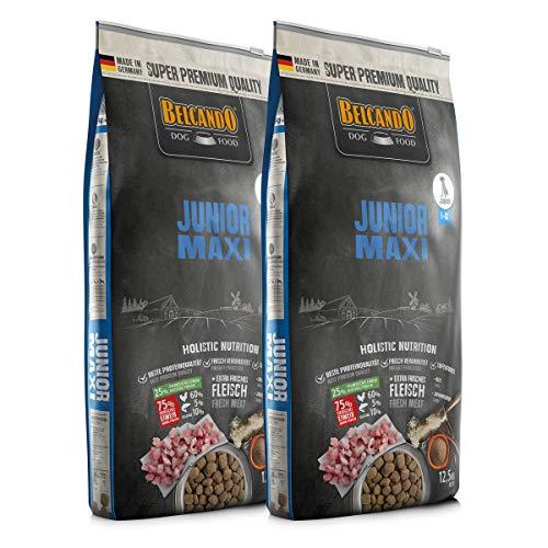Belcando 2 x 12,5 kg Junior Maxi- Sparpaket