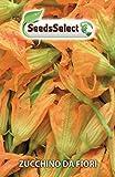 Semi Zucchino da Fiori, 10 Grammi