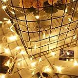 Lichterkette 200 Leds 22 Meter mit EU-Stecker von DC 31V Niederspannungstransformator und 8 Programm für Party, Halloween, Hochzeit, Beleuchtung Deko warmweiß von Uping [Energieklasse A+++] - 4