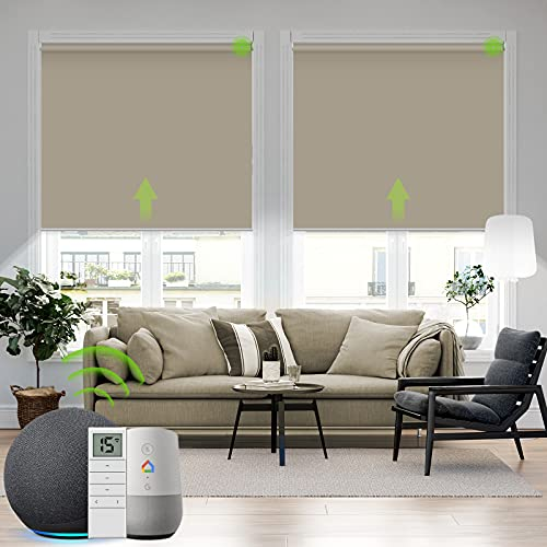 Yoolax Motorized Blind for Window with Remote...