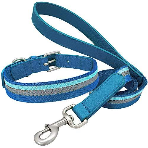 WWHPVP Cuello Y Correa De Cuero De Nylon Y Cuero, Conjunto De Collar De Cachorro Reflectante Ajustable para Pequeños Perros De Tamaño Mediano Francés Bulldog Mops Pitbull,Blau,25~31cm