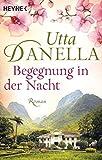 Utta Danella: Begegnung in der Nacht