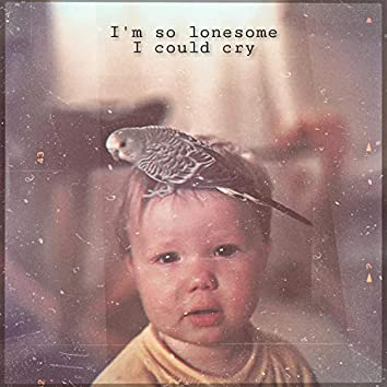 I'm So Lonesome I Could Cry
