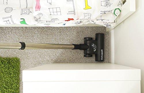 Henry Pet PET200 Bagged Cylinder Vacuum, 9 Litre, 620 Watt, Green Kitchen & Home Appliances Garden & Outdoors