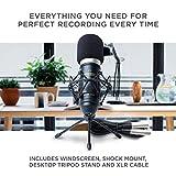 Zoom IMG-2 marantz professional mpm 1000 microfono