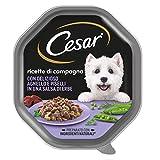 cesar ricette di campagna cibo per cane con delizioso agnello e piselli in una salsa di erbe 150 g - 14 vaschette