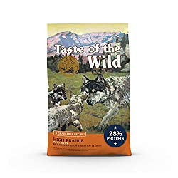 Taste of The Wild High Protein Dry Dog Food - Best puppy food labs