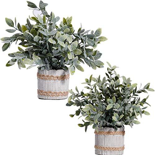 quancheng Künstliche Pflanzen, Pflanze Künstliche Mini Kunstpflanzen Echt Pflanzen Künstlich Eukalyptus Rosmarin Kleine mit Topf 2 Stück Home Schreibtisch Küche Badezimmer Garden Deko