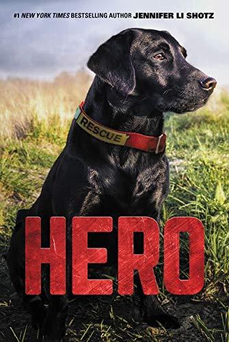Hero (Hero, 1)