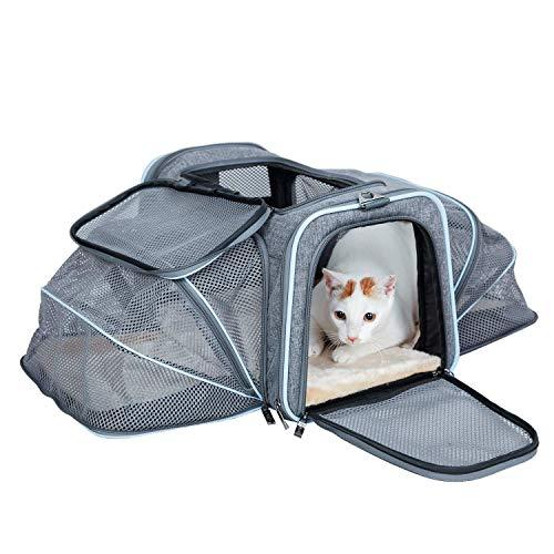 ABISTAB Hundebox faltbar Transportbox Hunde und Katze Tragetasche für Auto- und Flugreisen geeignet Tragetasche Maxi 72cm zweiseitig ausklappbar mit Langer Shultergurt:3-Grau-Himmelblau