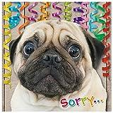 Susy Card 40010670 Geburtstagskarte/Nachträglich'Trauriger Hund', Maße: 15 x 0, 2 cm