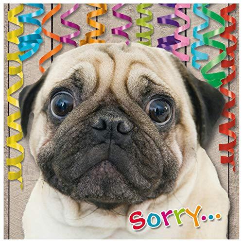 "Susy Card 40010670 Geburtstagskarte/Nachträglich\""Trauriger Hund\"", Maße: 15 x 0, 2 cm"