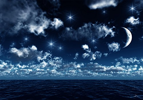 wandmotiv24 Fototapete Nachthimmel M 250 x 175 cm - 5 Teile Fototapeten, Wandbild, Motivtapeten, Vlies-Tapeten Nacht, Schlafzimmer-Modern, Mond M0045