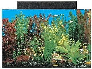 seaclear fish tank