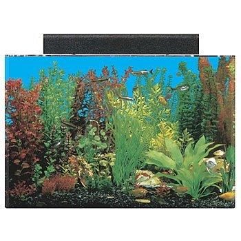 SeaClear 20 gal Acrylic Aquarium Combo Set, 24 by 13 by 16', Black