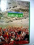 糸綢之路千里―シルクロード天山南北路を行く (1979年)