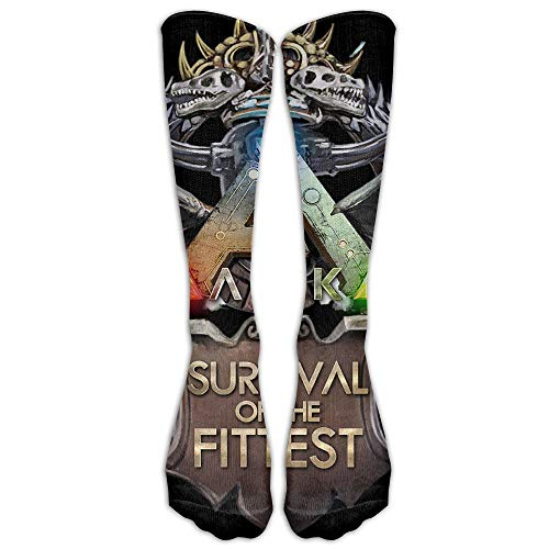 QUEMIN Unisex ARPG ARK Survival Evolved Logo Crazy Funny Cute Novelty Crew Calcetines