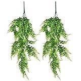 NA 2 Stück 80cm Künstliche hängende Reben Vine Farne Pflanzen gefälschte Girlandenrebe Grüne Kletterpflanzen Kunstpflanzen für Innen Draußen Zuhause Büro Garten Wand Hochzeit Dekor